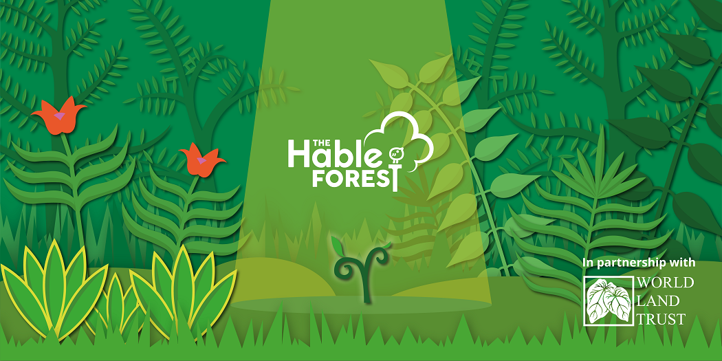 Announcing the Hable Forest, in partnership with The World Land Trust